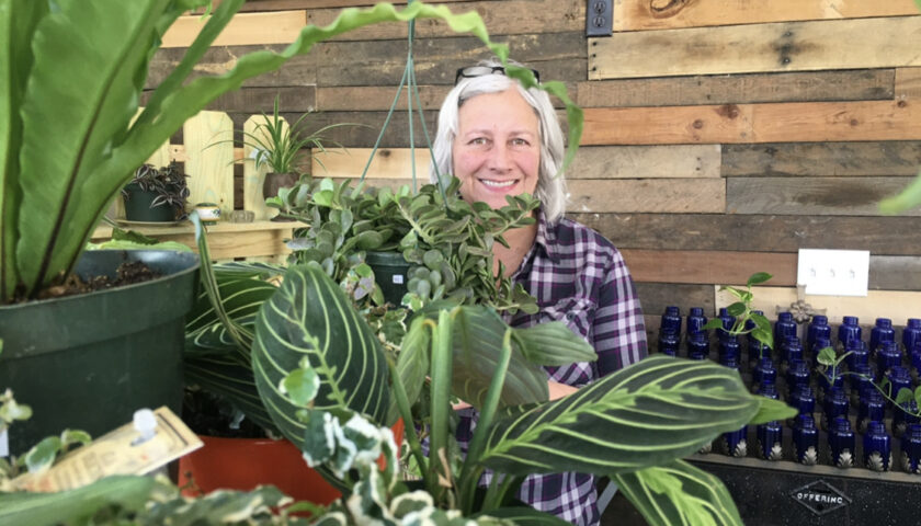 Support Local, Shop Local at Equinox Botanical Boutique